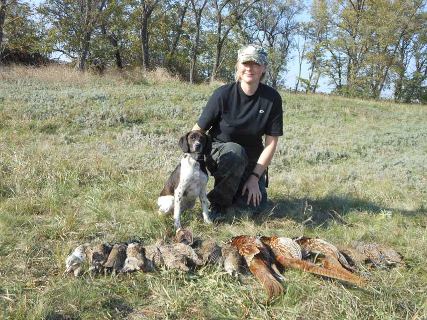 Эпаньол-бретон NUT - осенняя охота на фазана и куропатку